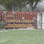 Lake Corpus Christi State Park Photo