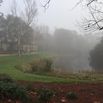 The beautiful hotel grounds on a foggy morning!