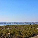 Φωτογραφία: Karasujima Island