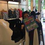 Loving their cows/icecream themed goodies