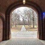 Beautiful collegiate gothic