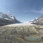 Photo de Columbia Ice Field