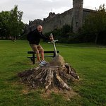 The sword in the stone with Cahir Castle in the back ground.