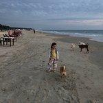 Photo of Magzika Beach Shack