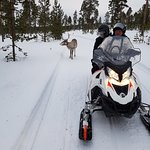 Photo of Ivalo Trek Lapland - Day Tours