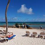 Foto de Natura Park Beach - EcoResort & Spa