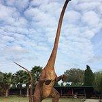 Photo of Dinosaur World