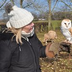 Cathy and the Owl