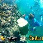 mallorca snorkeling with The Challenge Mallorca