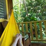 Photo of Tiskita Jungle Lodge