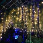 Photo de Buffalo and Erie County Botanical Gardens