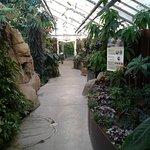 Foto de Montreal Insectarium