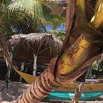 Hotel Frangipani Beach Villas