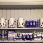 Lavender Bakehouse Foto
