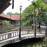 Foto de Sen Tay Ho (West Lake Lotus)