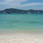Coral Island照片