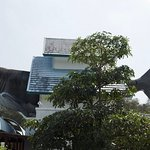 Chiang Mai Zoo Aquarium Photo