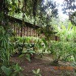 San Jorge Eco-Lodge at Milpe.