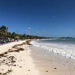 Billede af El Dorado Sensimar Riviera Maya