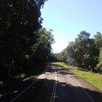 Estrada do parque
