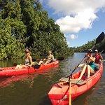 Paddling Wailua River on comfortable tandem kayaks.