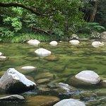 Photo of Mossman Gorge
