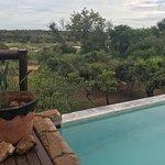 Photo of Bushwise Safaris