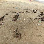 Foto de Lamai Beach