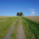 Hohburkersdorfer Rundblick Wanderweg