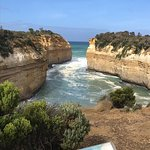 Great Ocean Highway 3 Day Tour Echidna Walkabout Tours