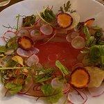 Forel,zuring,radijs,citrus, gravlax.( voorgerecht)