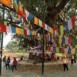 Foto de Templo de Maya Devi