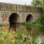 The bridge from the garden