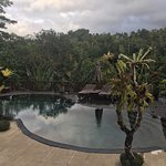 Foto Nandini Bali Jungle Resort & Spa
