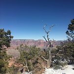 Bilde fra Grand Canyon by One Day Tours