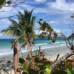 Foto de Zoni Beach