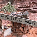 Foto de Little Horse Trail