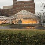 Penn State University Foto