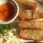 Spring Rolls at Wild Rice Thai Cuisine