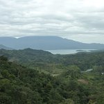 mirador from the cloud forest