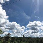 Photo of Banyan Tree Bike Tours