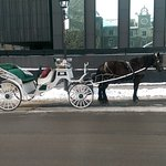 Horse drawn carriage for guided tour in the old town