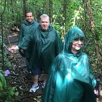 Rainforest Adventure Tour with ILT Costa Rica