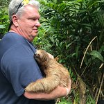 Sloth Hugging