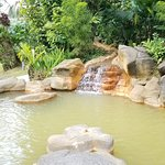 Natural hot springs. Color a surprise but same as every natural spring visited.