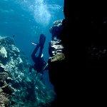 Photo de Panama Dive Center