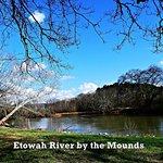 Foto Etowah Indian Mounds State Park