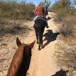 Foto de Houston's Horseback Riding
