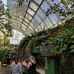 Bilde fra Riverbanks Zoo and Botanical Garden