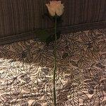 Photo de Oban Inn, Spa and Restaurant